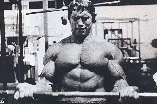 Arnold Schwarzenegger Fitness gym bodybuilding posters hunk muscle man Movie Star