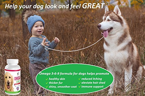 Best Omega 3 6 9 Fish Oil for Dogs - Helps with Itchy Skin, Coat, Joints, Heart and Brain - Fatty Acids Dog Supplements - Boost Immune System - 120 Chewable Tablets (Salmon Flavor)