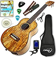 Lohanu Ukulele Amazing Looking Glossy Spalted Maple With Armrest With 3 Band EQ Pick up With All Accessories I