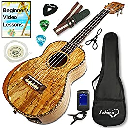 Ukulele From Lohanu Amazing Looking Spalted Maple With Armrest Glossy Finish With 3 Band EQ & Pickup With All…