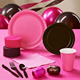 Brown & Hot Pink Standard Pack for 24 Party Supplies
