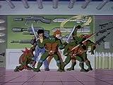 Teenage Mutant Ninja Turtles: The Complete Season 9