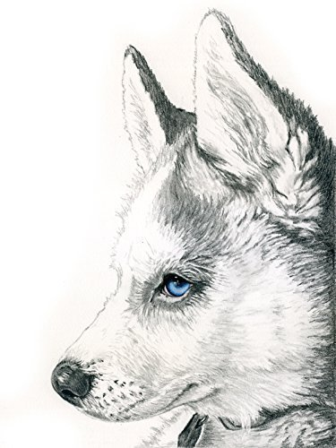Custom Pencil Pet Portrait with optional spot watercolor by artbymarinparr