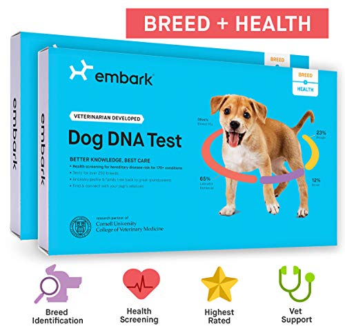 Embark   Dog DNA Test   Breed  Health Kit   Breed Identification  Canine Genetic Health Screening   Pack of 2