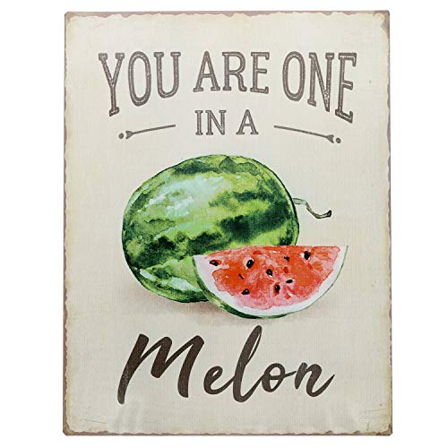 Barnyard Designs You are One in A Melon Funny Retro Vintage Tin Bar Sign Country Home Decor 13