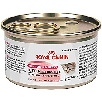Royal Canin Feline Health Nutrition Thin Slices in Gravy Wet Kitten Food, 3 oz, 12 CT