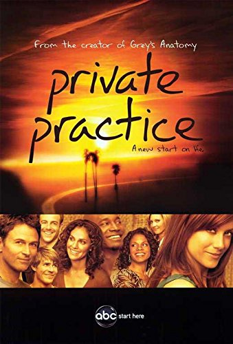Taye Diggs Poster (Private Practice Poster TV B 11x17 Kate Walsh Tim Daly Taye Diggs Amy Brenneman)