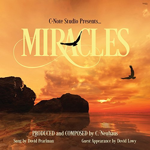 Miracles by Dovid Pearlman (2015-08-03)