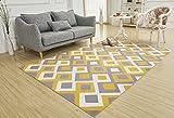 SANNIX Soft Fabric Shaggy Area
