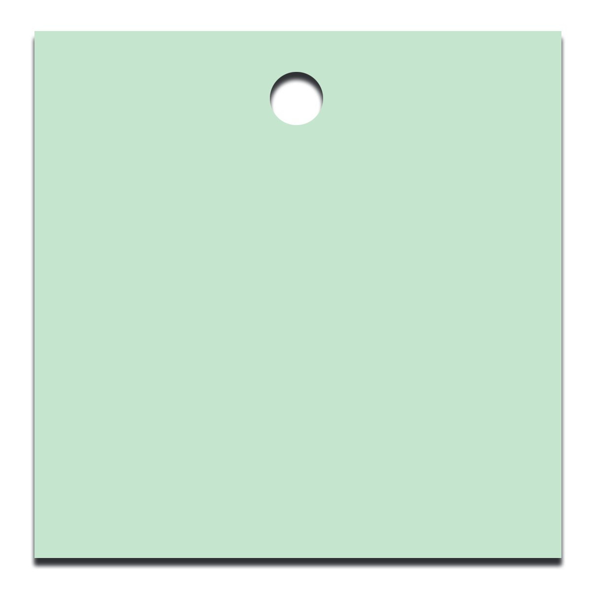 Accuform TDG229WT Accu-Ply Plastic Blank Identification Tag 2-1//2 W x 2-1//2 L White Pack of 25 2-1//2 W x 2-1//2 L Square