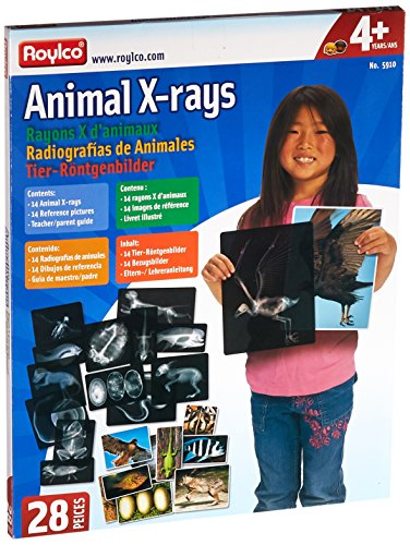Roylco R5910 Animal X-Ray Set, 8