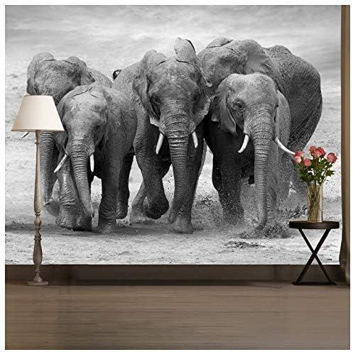 Azutura Noir Et Peinture Murale Blanche éléphant Papier