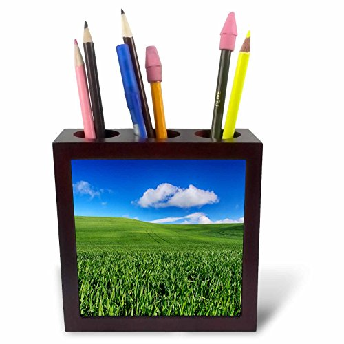 3dRose Danita Delimont - Agriculture - USA, Washington State, Palouse Country, Sunny day over wheat farm. - 5 inch tile pen holder (ph_279779_1)