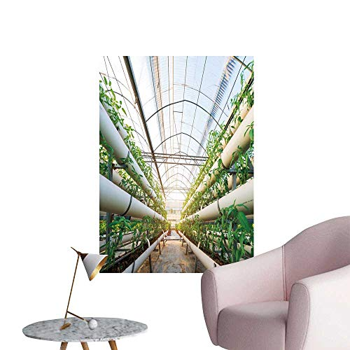 SeptSonne Wall Art Prints Vegetables Grow in a Greenhouse Witch Made from Metal Profile for Living Room Ready to Stick on Wall,28