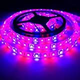 Toogod Full Spectrum 16.4ft/5m 5050SMD Waterproof Red Blue 2:1 LED Strip Plant Growing Light for Garden Greenhouse Hydroponic Seedling Veg plant Grow DC12V (16.4ft LED Strip) For Sale