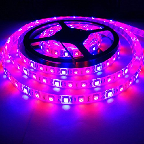 Toogod Full Spectrum 16.4ft/5m 5050SMD Waterproof Red Blue 2:1 LED Strip Plant Growing Light for Garden Greenhouse Hydroponic Seedling Veg plant Grow DC12V (16.4ft LED Strip)