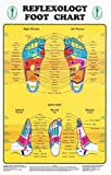 reflexology chart laminated - Reflexology Foot Chart - Reflexology Zones Marked. 1 Laminated Chart 8