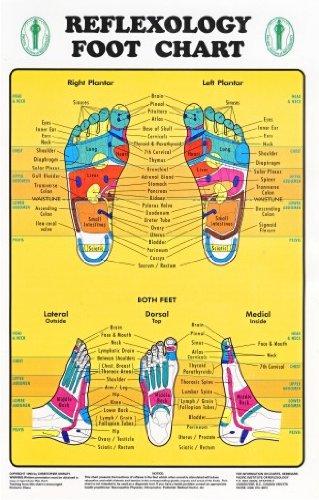 Foot Reflexology Chart - 2