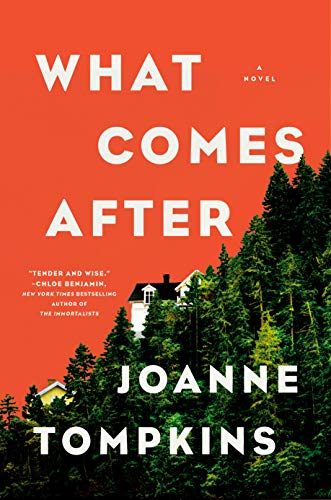 Book Cover: What Comes After: A Novel
