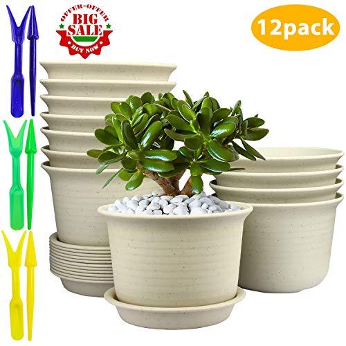 Flower Pots,Pots with Drainage Hole,Plastic Flower Pots with Pallet - Set of 12 (Decorative Pots Plant Plastic)
