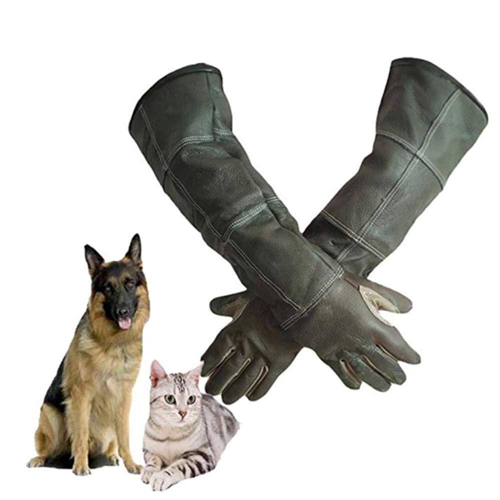 marca YAOBAO Guanti Guanti Guanti di Protezione degli Animali Cat Dog Bird Snake Pappagallo Lucertola, Anti-morso Scratch Gardening Wild Animals Protezione Guanti Mano & Braccio Protecter (1 Paio),M  più preferenziale