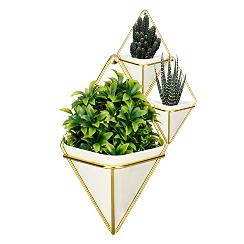 (Hanging Vase,LANMU Air Plants Pots,Hanging Wall Decor,Plant Holder,Hanging Plant for Air Plants/Succulents/Cactus Plants/Office Plants/Artificial Plant, Modern Home Decor (Gold,1 Large and 2 Small))