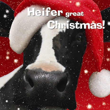 Heifer Great Christmas Cow Christmas Cards Pack: Amazon.co.uk ...