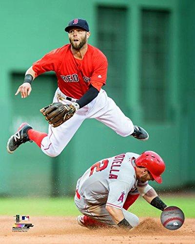 The Boston Red Sox Dustin Pedroia 8x10 Photo Picture