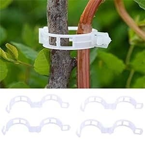 Clips de soporte para plantas de jardín 50/100/200pcs para enrejado cordel invernadero planta tomate colgante Vine verduras frutas clip de fijación