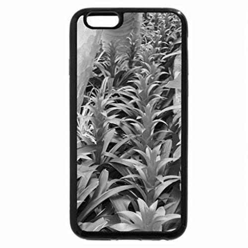 iPhone 6S Plus Case, iPhone 6 Plus Case (Black & White) - Garden day at Edmonton Pyramids 41