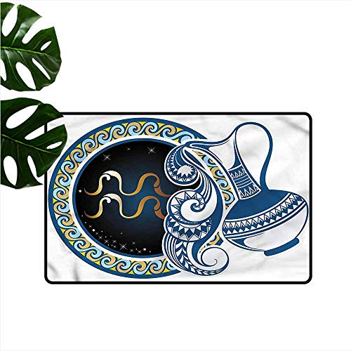 DONEECKL Washable Doormat Zodiac Aquarius Sign Personality W16 xL24