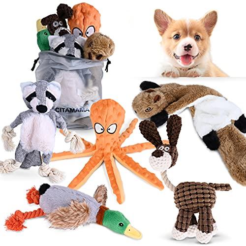CITAMAMA Quietschendes Hundespielzeug, 5 Stück Hundeplüschspielzeug Kauspielzeug für Hunde Zahnreinigung Interaktives…