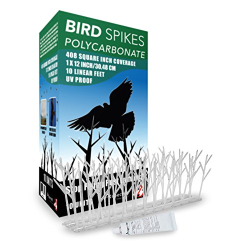 Aspectek Polycarbonate Bird Spikes Kit, 10 Feet with Transparent Silicone Glue (Bird Deterrent Spikes)