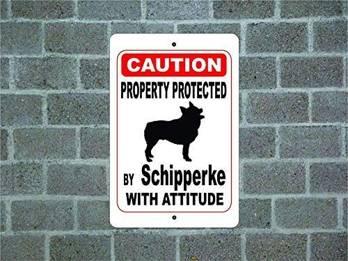 Cartello in Alluminio con Scritta Property Protected by Schipperke Guard Dog Warning Yard Fence Breed 20 x 30 cm EpochSign