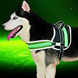 "[Pet Industries] Reflective LED Dog Harness -USB Rechargeable [Premium Edition] (Available in 5 sizes) (X-Large (Girth 30 – 40""), Atomic Green)"