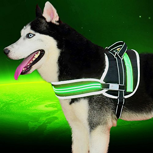 Compare Price To Led Light Dog Harness Dreamboracay Com