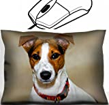 MSD Mouse Wrist Rest Office Decor Wrist Supporter Pillow design: 7254790 Cute puppy jack russell with colourful collar