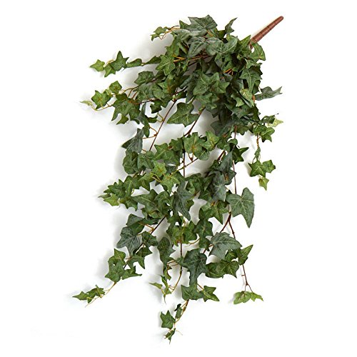Ivy Cascading Silk Plant - Factory Direct Craft Flocked Poly Silk English Ivy Bushes | 2 Ivy Bushes