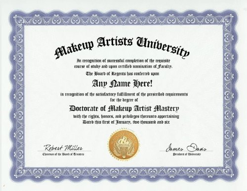 Amazon.com: Makeup Artist Degree: Custom Gag Diploma Doctorate Certificate (Funny Customized Joke Gift - Novelty Item): Toys & Games