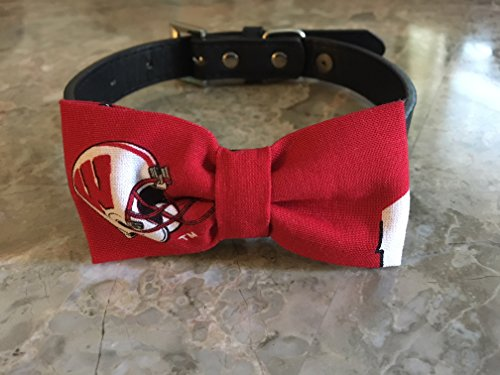 Wisconsin Badgers DogmBoe Tie by Creations by Glo