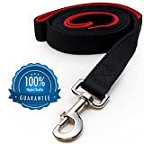 [Strong] Dog Leash with Bonus FREE Waste Bag Dispenser ($5.00 Value) - Thick Padded Dual Handles & 100% Nylon (6ft. Long) - Comfortable Grip - Ideal for Large, Medium and Small Dogs