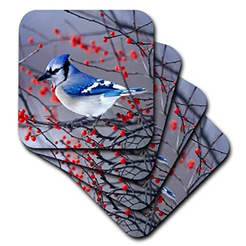 3dRose cst_259293_3 - Juego de 4 posavasos de cerámica con diseño de arbusto de arándano azul en invierno, condado de...