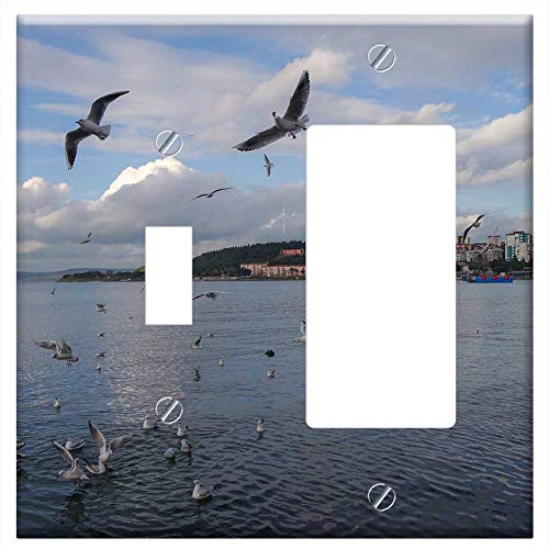 1-Toggle 1-Rocker/GFCI Combination Wall Plate Cover - Body Of Water Birds Marine Nature Sky Beach B