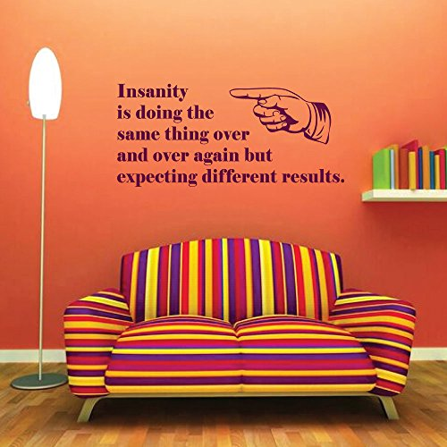 Albert Einstein Vinyl Wall Decal - Definition of Insanity Doing The Same Thing Over Again, Expecting Different Results - Vinyl Decor - Motivational Wall Quote -