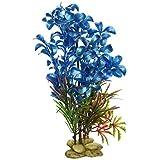 Aquatic Creations Hygrophilia Aquarium Plant, 8-Inch, Blue