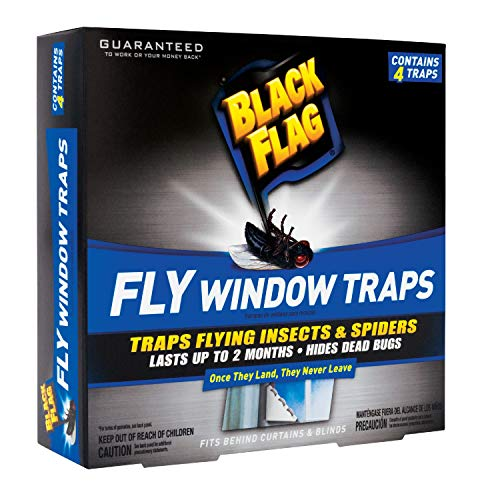 Black Flag Fly Window Trap, 4-Count, 12-Pack