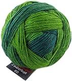 Schoppel-Wolle Zauberball 100 2168_ Evergreen VE: 100g
