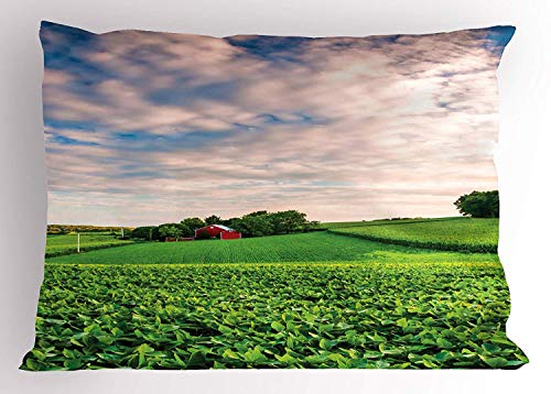 TYANG Nature Pillow Sham, Sunset Clouds Over a Farm in Southern York Pennsylvania Nature Scenery, Decorative Standard Queen Size Printed Pillowcase, 30 X 20 inches, Lime Green Blue Red