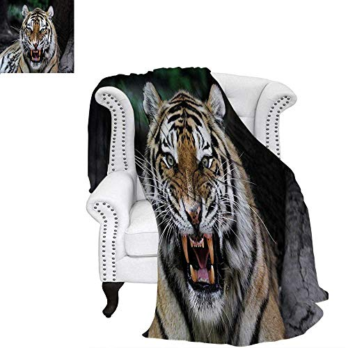 African Oversized Travel Throw Cover Blanket Tiger Face with Roaring Wildlife Safari Savannah Animal Nature Zoo Photo Print Super Soft Lightweight Blanket 60