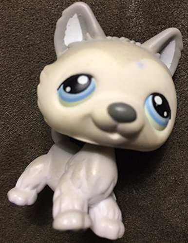 Littlest Loose Figure Shop Pet (Husky #69 (Standing, White, Grey Accents) Littlest Pet Shop (Retired) Collector Toy - LPS Collectible Replacement Single Figure - Loose (OOP Out of Package & Print))